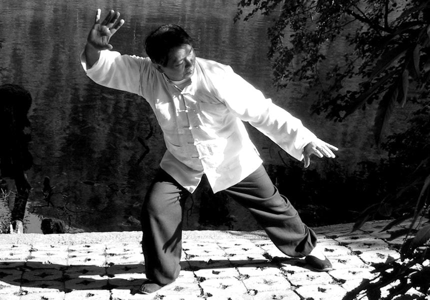 Meister Lam Kam Chuen